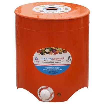 Электросушилка Электромаш для фруктов и овощей цена