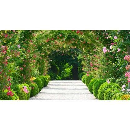 Фотообои флизелиновые Арка из роз 370х200 см