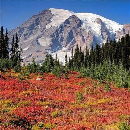Фотообои флизелиновые Снежные горы 200х200 см цена