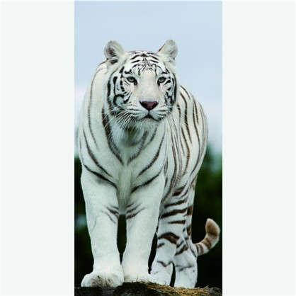 Фотообои флизелиновые Тигр 100х200 cм