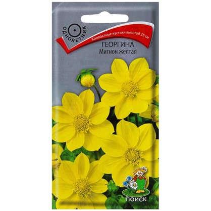 Георгина Мигнон цвет жёлтый цена