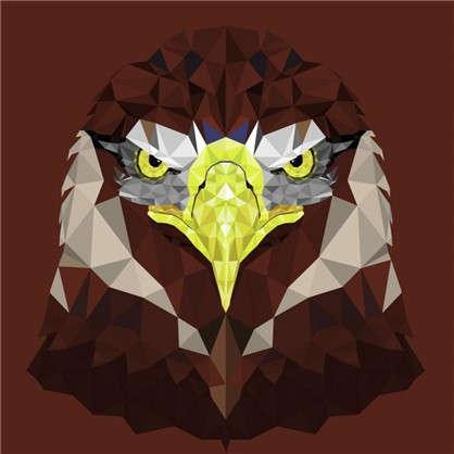 Холст 30х30 см Голова орла