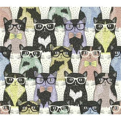 Холст 40х40 см Кошки и очки цена