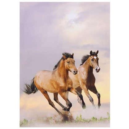 Холст 50х70 см Лошади