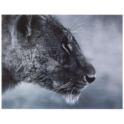 Картина без рамы 40х50 см Дикая львица цена
