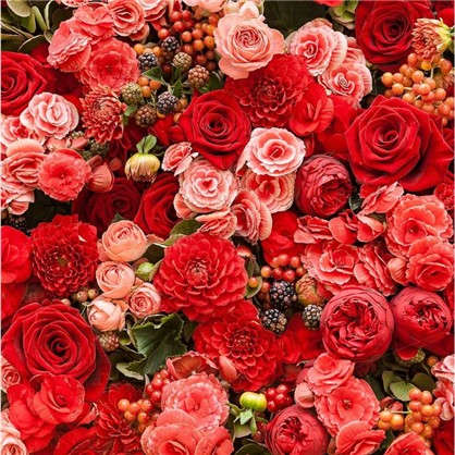 Картина на холсте 40х40 см Алые розы