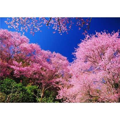Картина на холсте 40х50 см Деревья в цвету цена