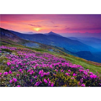 Картина на холсте 40х50 см Горы