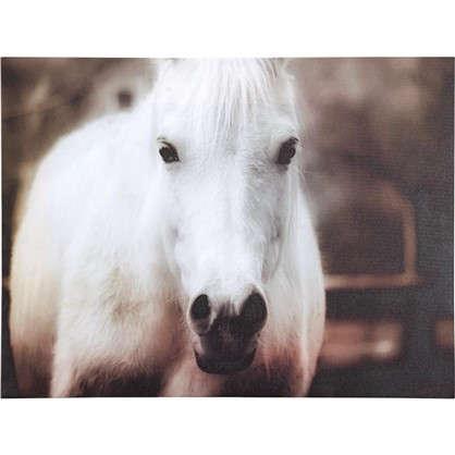 Картина на холсте Белая лошадь 30х40 см цена