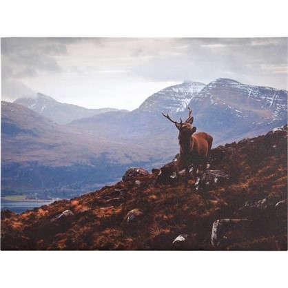 Картина на холсте Олень и гора 30х40 см цена