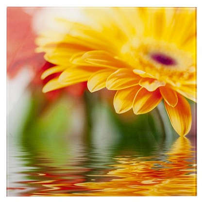 Картина на стекле 30х30 см Flower 28702009 цена