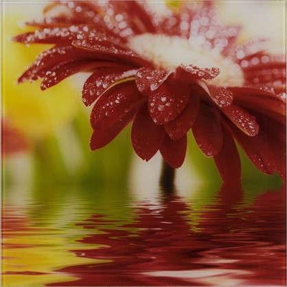 Картина на стекле 30х30 см Red flower 27737524 цена