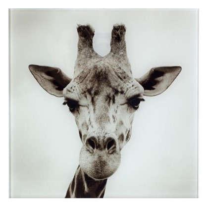 Картина на стекле 30х30 см Жираф цена