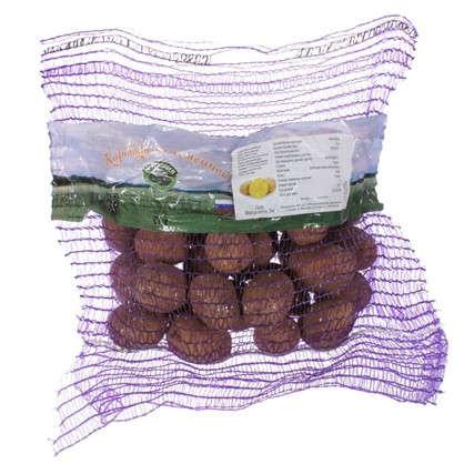 Картофель семенной Гала 2 кг (Элита) цена