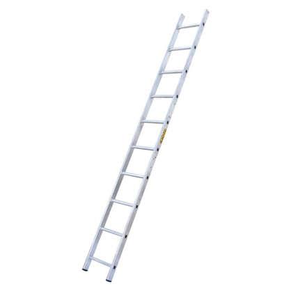 Лестница приставная односекционная Standers 12 ступеней цена
