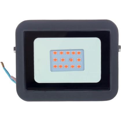 Прожектор светодиодный Volpe 10 Вт 240 Лм IP65 цвет красный цена