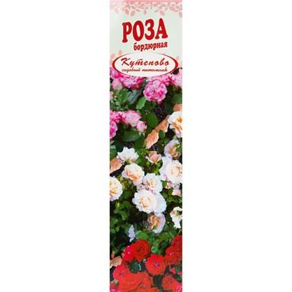 Роза бордюрная Оранж Беби в коробке цена