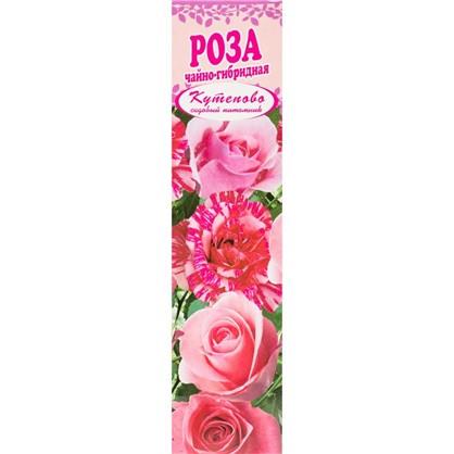 Роза чайно-гибридная Русская Красавица в коробке цена