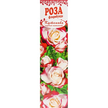 Роза Флорибунда Шнеевихтен в коробке цена
