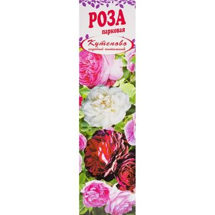 Роза парковая Луис Одьер в коробке цена
