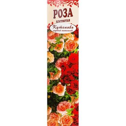 Роза плетистая Шнеевальцер в коробке цена