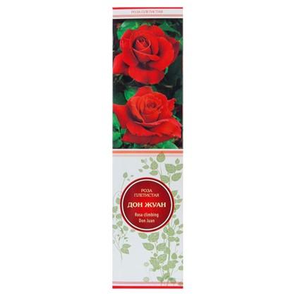 Розы плетистые Дон Жуан