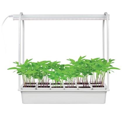 Светильник светодиодный Минисад для растений 10 Вт 12 кашпо цена