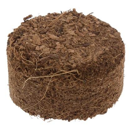 Таблетки кокосовые 4 см 10 шт. цена