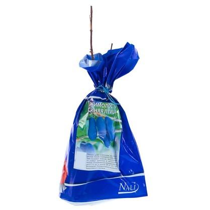 Жимолость сьедобная Синяя птица (пакет) цена