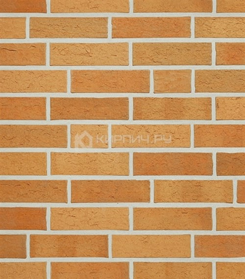 Кирпич для фасада Roben Ravello gelb-bunt NF рельефный 240х115х71