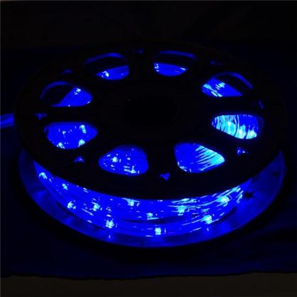 Гирлянда для улицы дюралайт синий 8 м 24 лампы