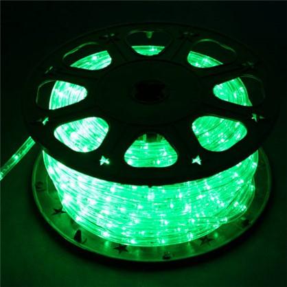 Гирлянда для улицы дюралайт зелёный 50 м 24 лампы